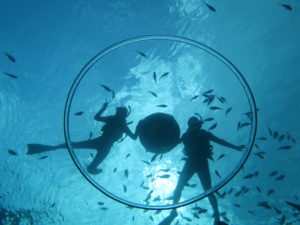 沖縄の海でシュノーケル